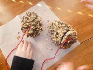 Sprinkling extra bird seed onto peanut butter covered pine cones.